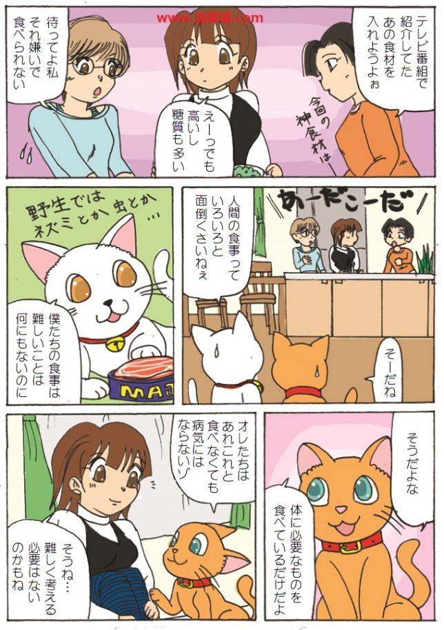 猫の食事は市のウルで健康に良いと言う漫画