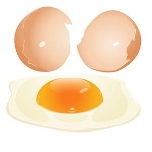 卵を割ったところ