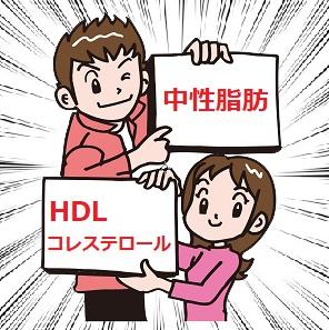 中性脂肪HDLコレステロール比